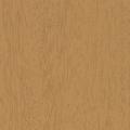 TAUARI-TOLENTINO-120x120